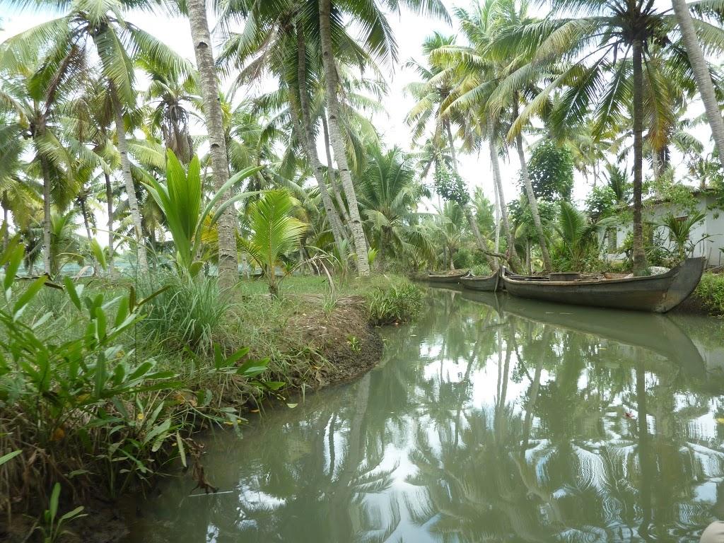backwaters de Kollam