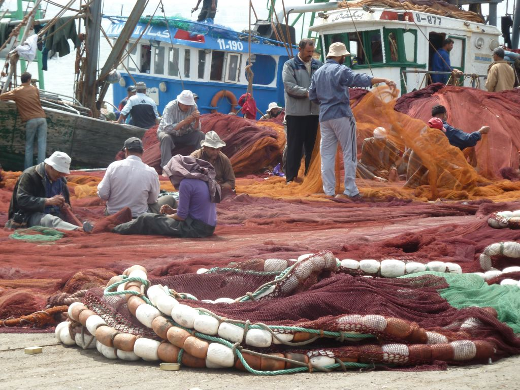 port de pêche d'Agadir, Maroc