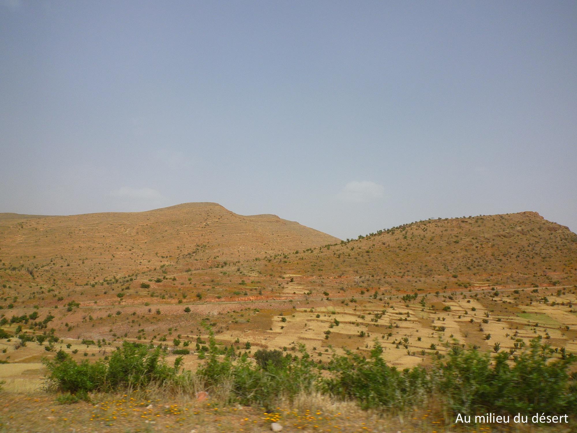 route tafraout maroc